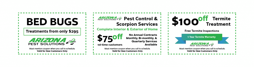arizona pest solutions gilbert az