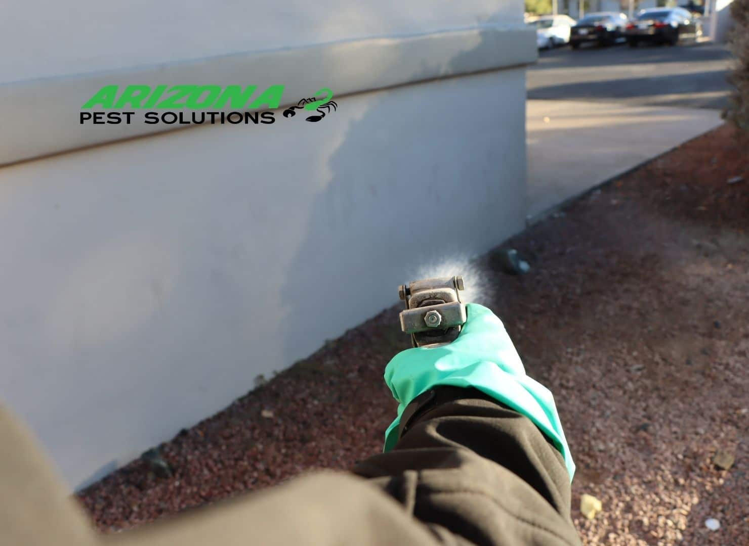 commercial pest control services - arizona pest solutions gilbert az (1)