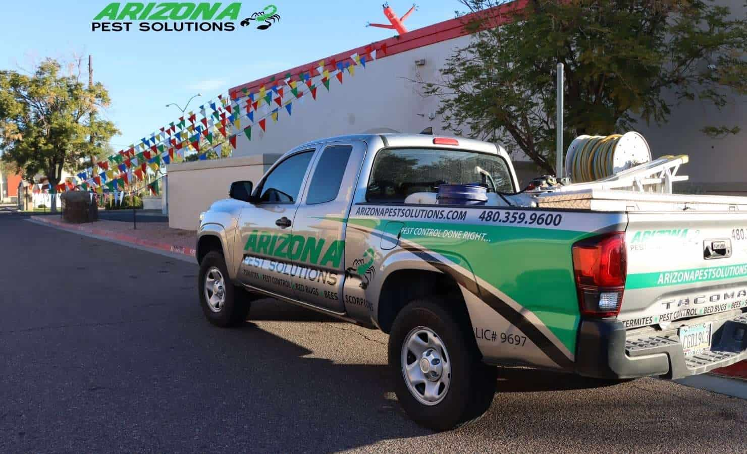 commercial pest control services - arizona pest solutions gilbert az